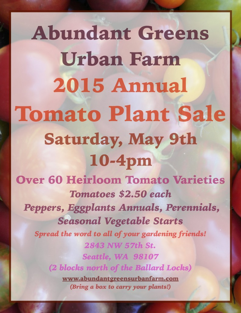 Annual 2015 Tomato Plant Sale Poster JPEG