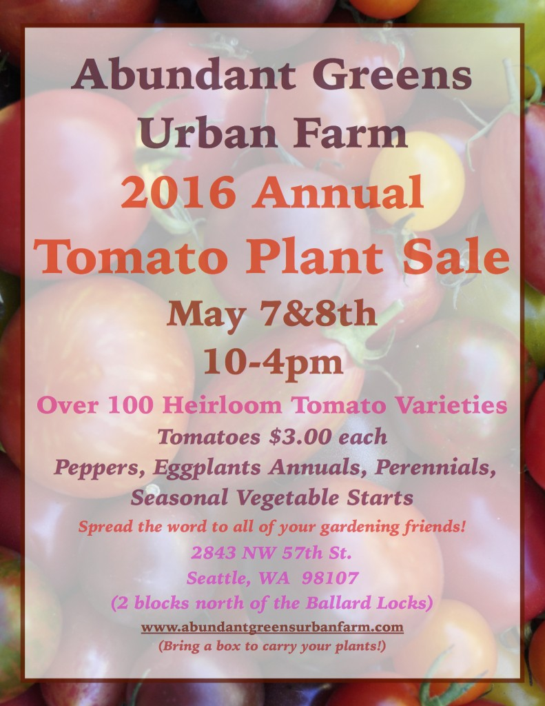 2016 Tomato Plant Sale Poster JPEG