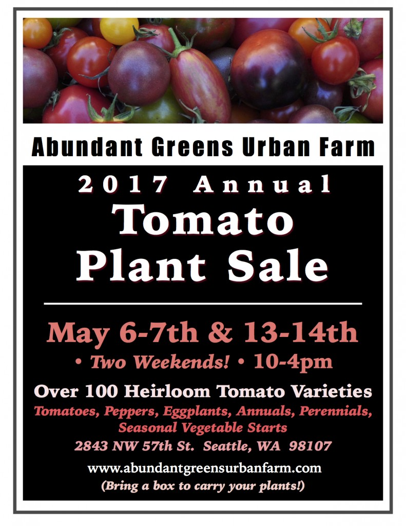2017 Tomato Plant Sale Poster 3 JPEG
