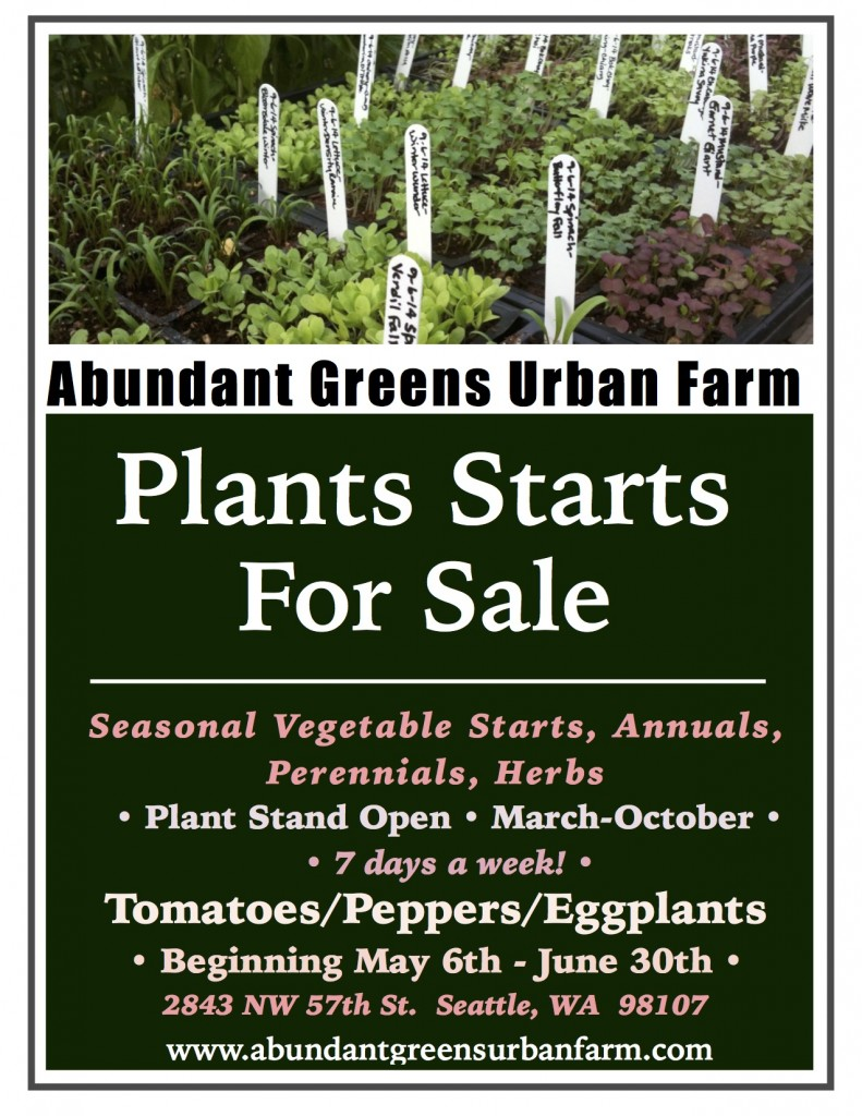 *Vegetable Plants For Sale Poster JPEG