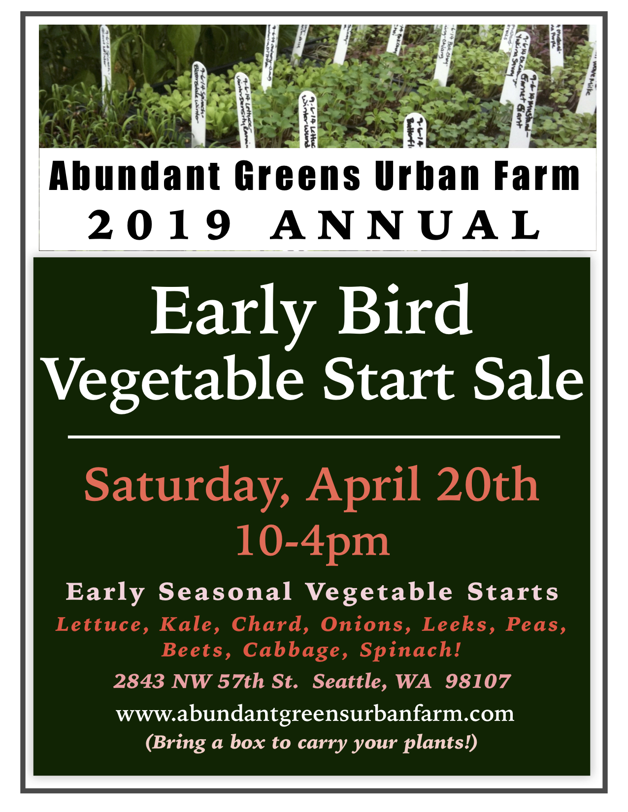 2019 Early Bird Vegetable Start Sale   Abundant Greens Urban Farm