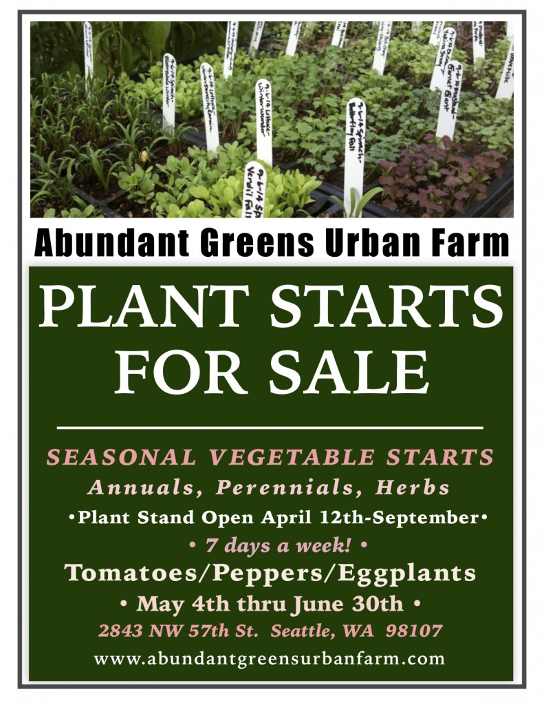 2019 Vegetable Plants For Sale Poster jpeg