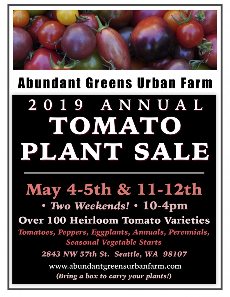 2019 Tomato Plant Sale Poster jpeg