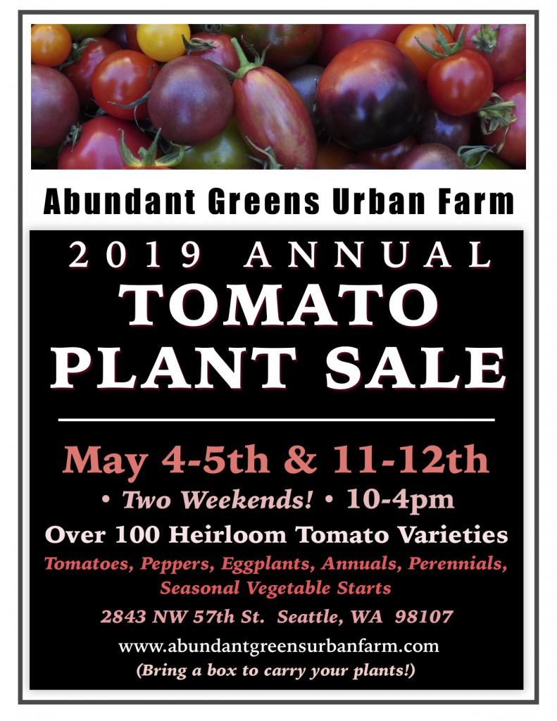 2019 Tomato Plant Sale Poster jpeg